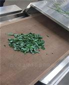 传送带式灰灰菜的微波干燥设备