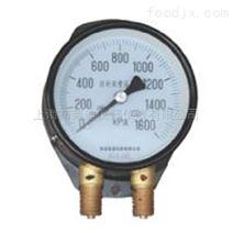 上海自动化仪表四厂YZS-102双针双管压力表