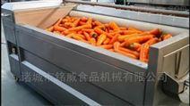 小型胡萝卜去皮机器设备