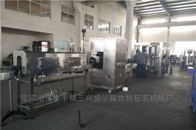 DGCF系列小型瓶装盐汽水生产设备三合一灌装机
