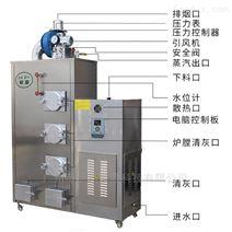 小型蒸汽洗車蒸汽發生器價格