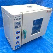 101-4A电热鼓风干燥箱可定做的