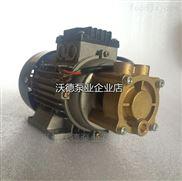 锅炉给水泵 蒸汽锅炉泵WD-021泵 高压泵