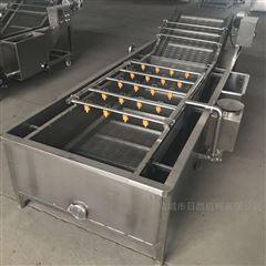 RC4000型全自动果蔬清洗流水线生姜大枣清洗机