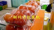 广东省水果,蔬菜包装机械