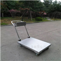 DCS-QC-D500kg小型移动式地磅/1000kg移动电子平台秤