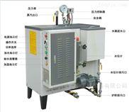 9千瓦电加热蒸汽发生器