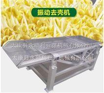 安徽全自动豆芽机生产厂家