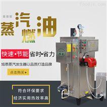 蒸电缆蒸汽发生器