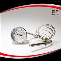 200RF23022压力温度计