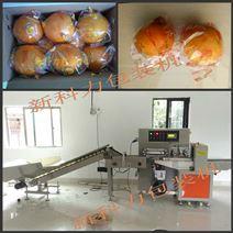水果蔬菜包裝機