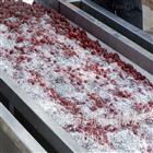 HB-3500蔬菜清洗机厂家 净菜加工设备 两年质保