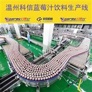 成套蓝莓果汁饮料生产线设备厂家温州科信