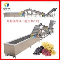 果蔬清洗风干生产线 厂家专业加工订制