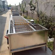 全自動蔬菜清洗機生產廠家