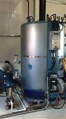 100Kg小型燃油蒸汽发生器