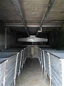 豆芽机生产厂家