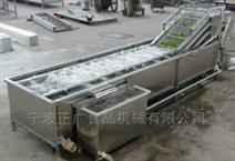 叶类蔬菜鼓泡清洗机