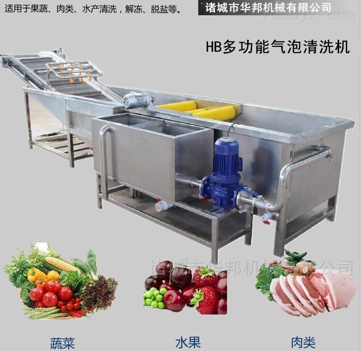 华邦供应果蔬气泡清洗机 人参菜清洗设备