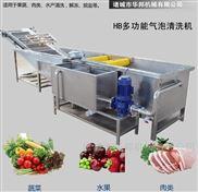 全自动蔬菜清洗机 果蔬清洗风干流水线