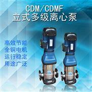 轻型立式多级离心泵建筑工地二次供水增压泵