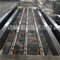 大型蔬菜清洗生产线