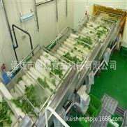 全自动蔬菜清洗生产线