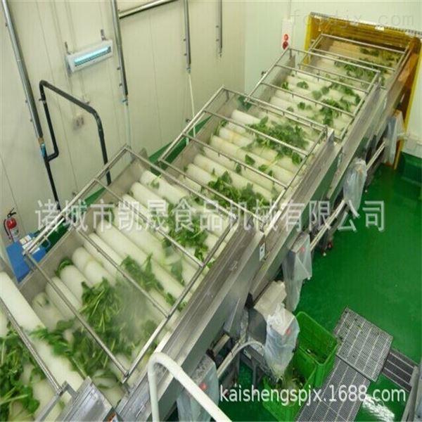 大型蔬菜气泡清洗机