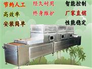 石墨隧道式微波干燥机
