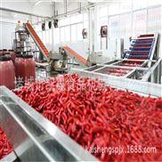 喷淋蔬菜清洗生产线