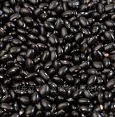 哈爾濱黑豆干燥機 微波干燥設備廠家介紹