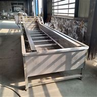 QP-4000厂家直销杨梅清洗加工设备