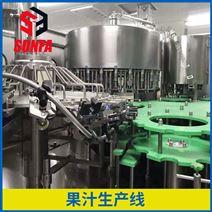 全自動小型果汁飲料生產線