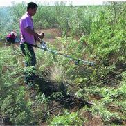小型園林割草機小麥 源頭廠家