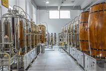 自酿精酿啤酒设备500L银色人孔版发酵罐