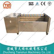 TSXM-12-山药去泥毛辊清洗机
