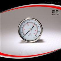 100毫米偏心軸向充油壓力表