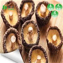 香菇热泵烘干设备厂家定制 根茎类烘干