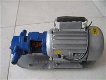 便携手提式齿轮泵 微型齿轮输油泵