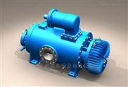 外润滑耐磨型双螺杆泵 原油输送泵