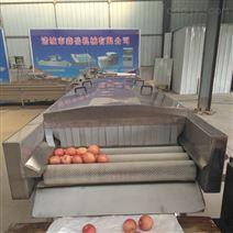 厂家直销柑桔橙柚水果毛刷喷淋连续清洗机