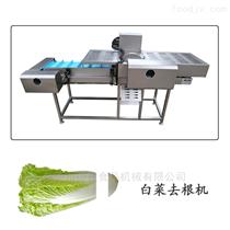 DYQG-2600大型青菜白菜去根机德盈机械