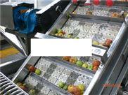 网带清洗输送机
