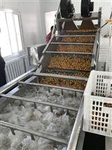 800杏子清洗机