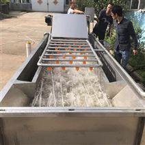 厂家热销小龙虾气泡清洗机性价比高