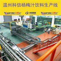 成套杨梅果汁饮料生产线设备杨梅汁灌装设备