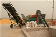 缅甸地坑式大型玉米脱粒机用起来就是方便