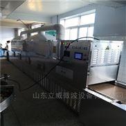 济南陶瓷微波烘干设备厂家