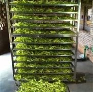 黃花菜烘干機金針菜干燥設備