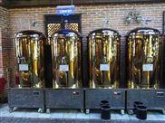 自釀精釀啤酒設備釀酒罐德國發酵罐500升